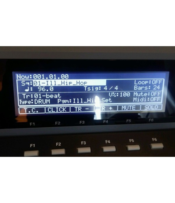 Akai MPC 1000 Display Original